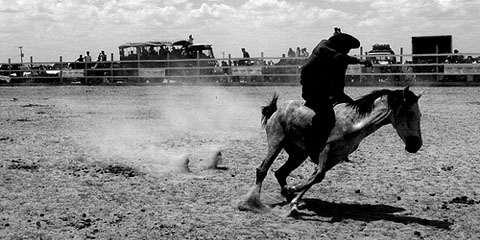 Easter rodeo, Lethem, Guyana. Photograph by Nicholas Laughlin